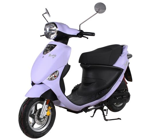 buddy50-lavender.jpg