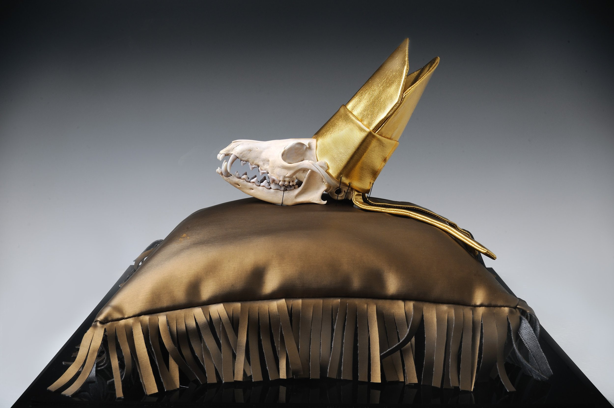 "Missionary Fox   Fox skull and gold lamé  16.5"" x 16.5""  $2,000 [Includes pillow and vitrine]   Click here to inquire ."
