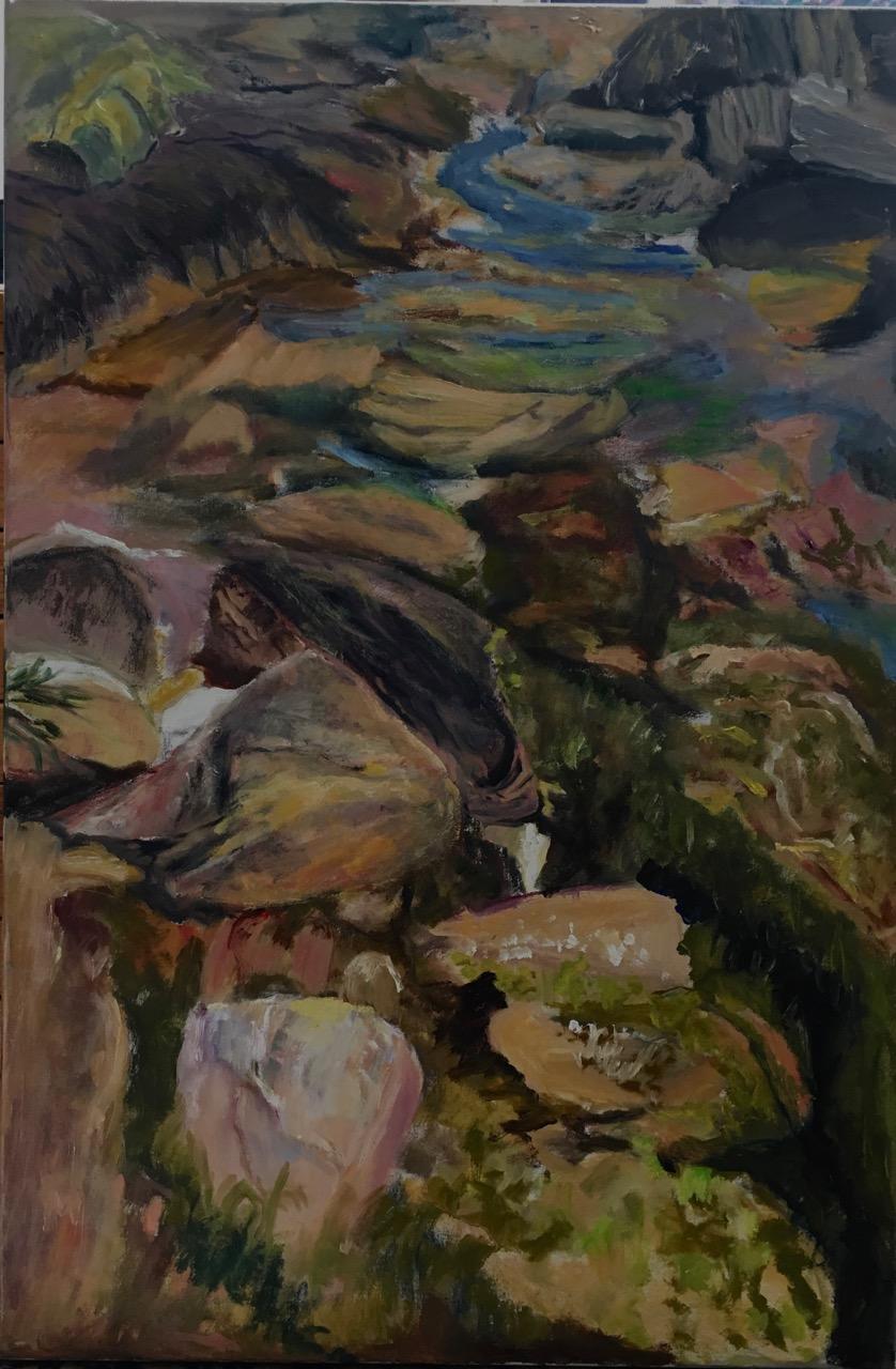 "Maine Tide Pool   Suzanne Goldberg  Oil on Canvas  36"" x 24""  $1,500   Click here to Inquire"