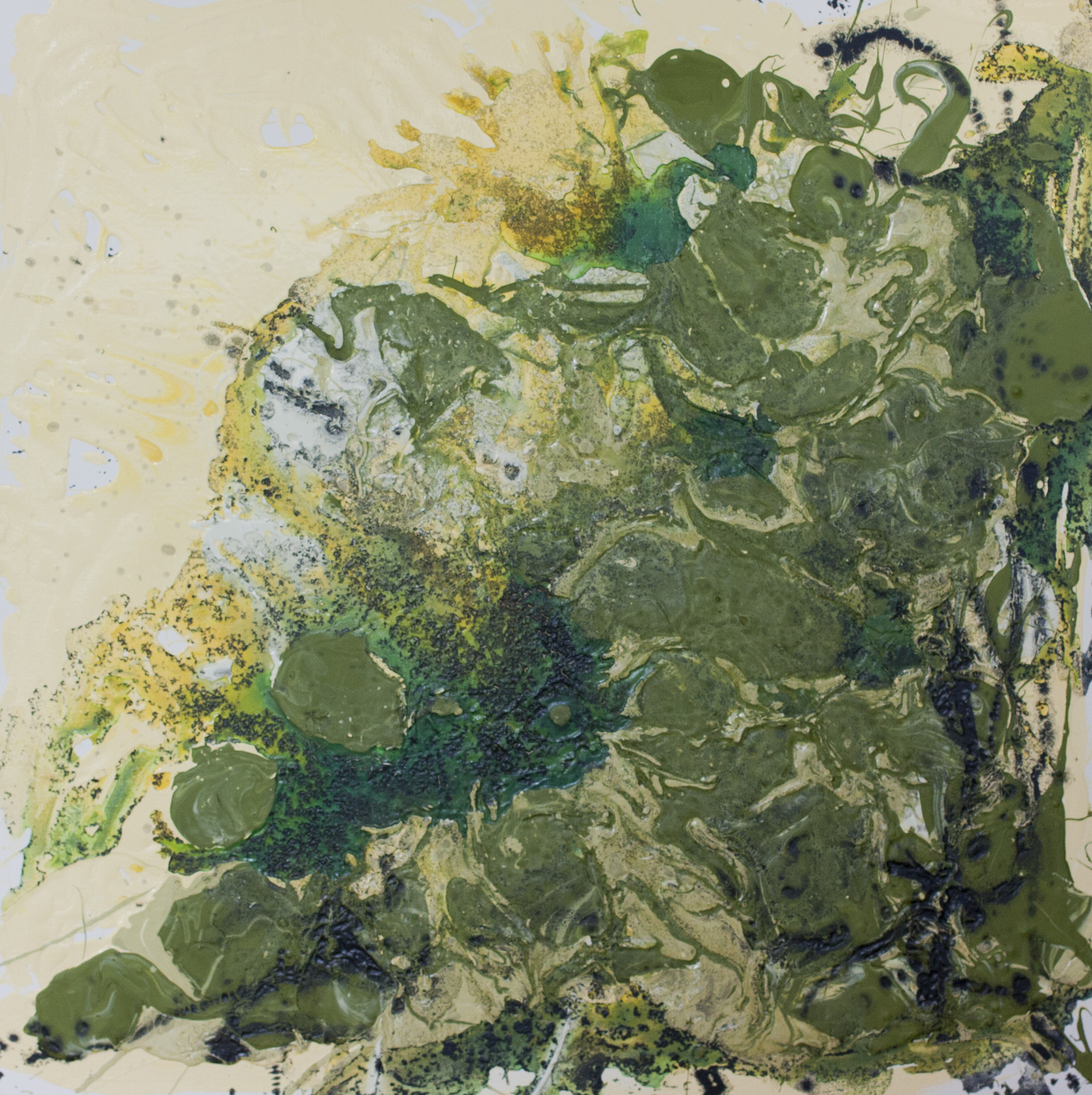 "Mess of Green   Kathryn Camicia  Latex and Oil on Canvas  30"" x 30""  $800   Click here to Inquire"