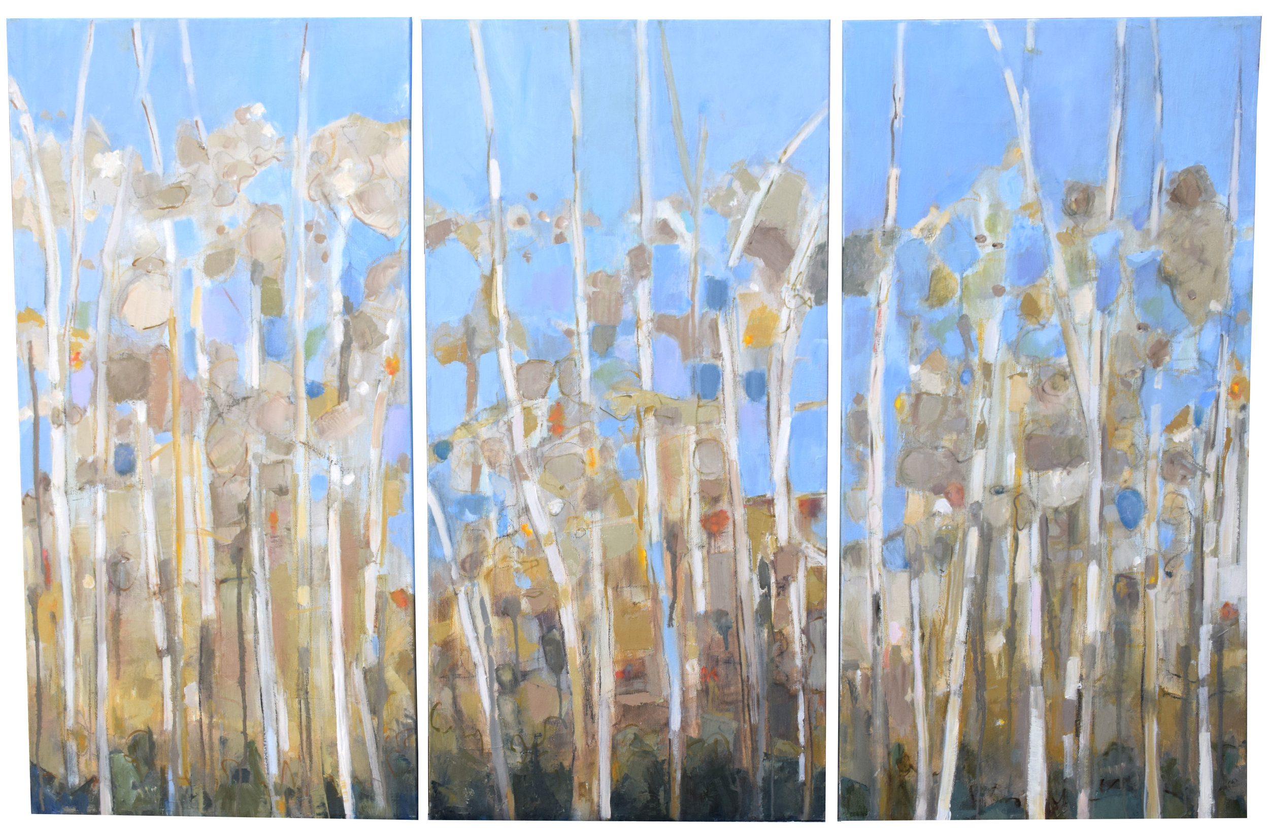 """#29 Triptych - Aspen   Oil on Canvas  31"""" x 48""""  SOLD"""