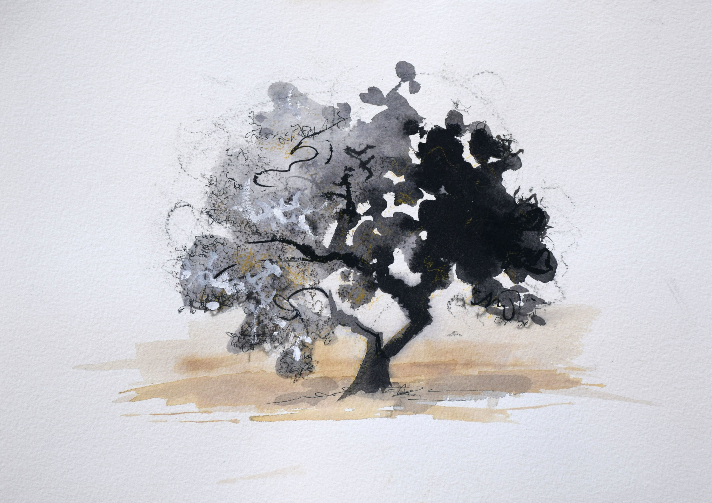"#8 Stellenbosch, South Africa   Ink on Paper  13 ½"" x 15""  SOLD"