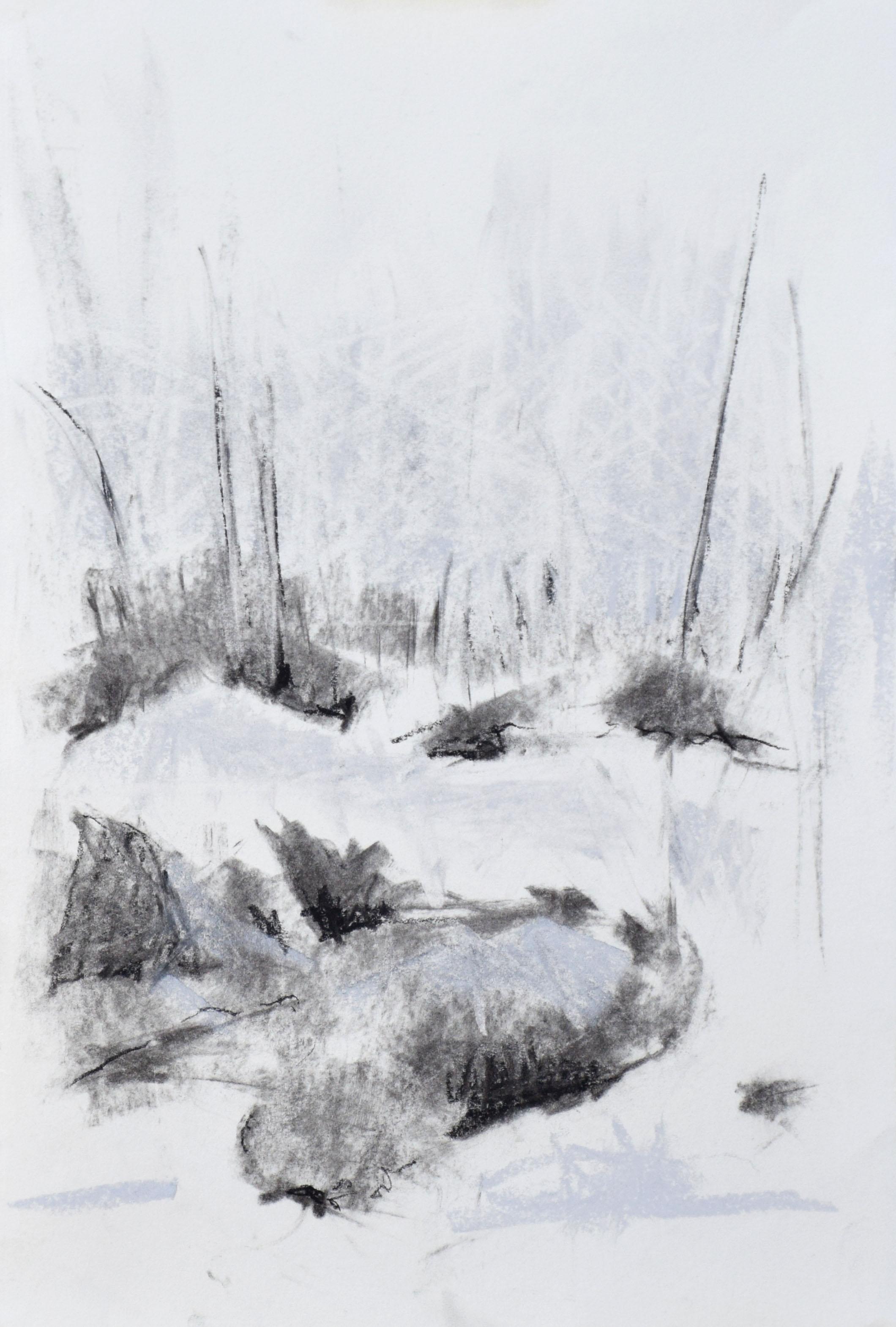 "#6 Yosemite II   Charcoal on Paper  11"" x 15""  SOLD"