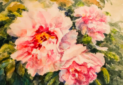 Freda Lee-McCann, My Mother's Peonies