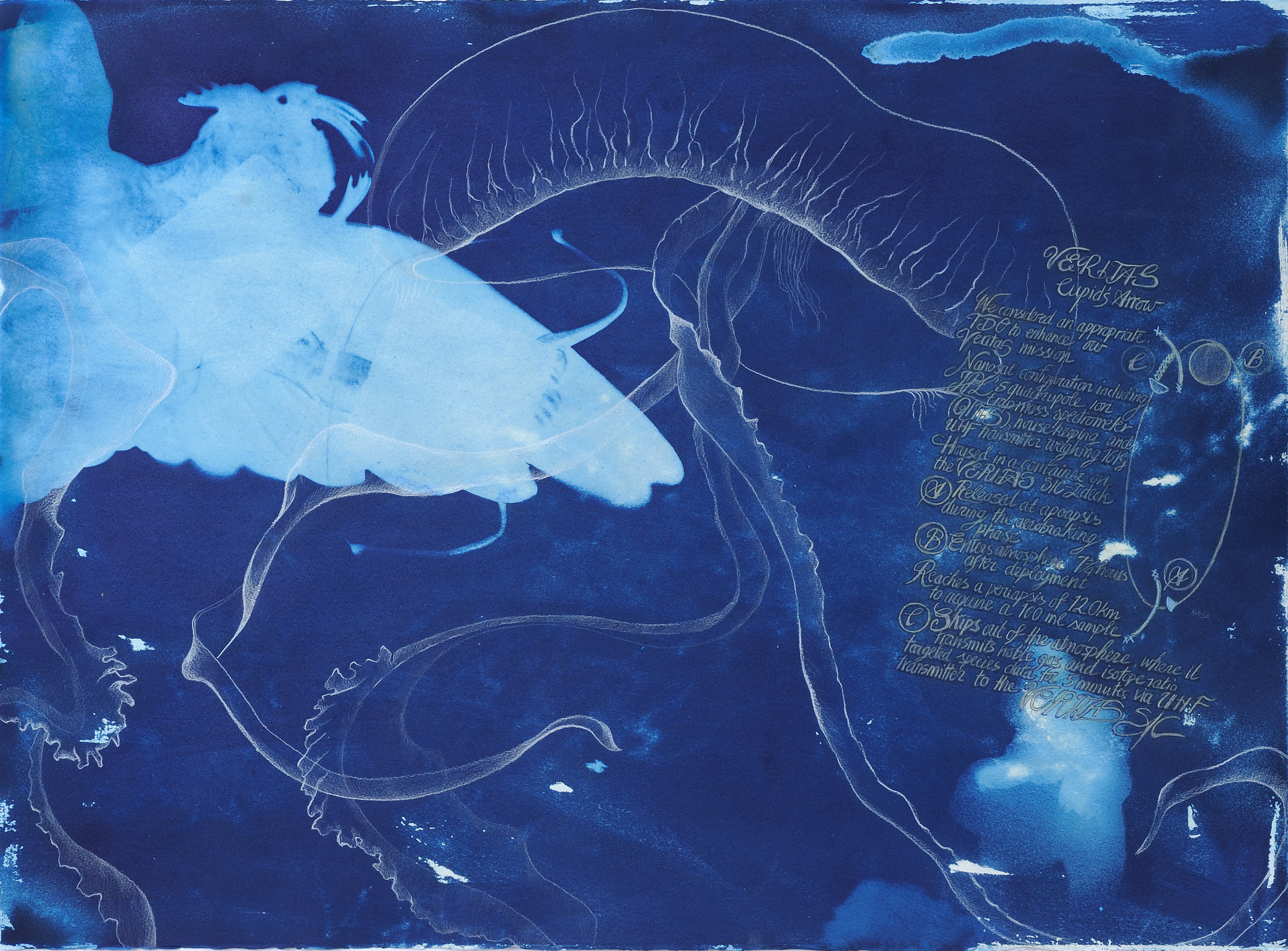 "Cupid's Arrow , Micheline Klagsbrun. Mixed media with cyanotype on paper. 22"" x 30"".  Inquire."