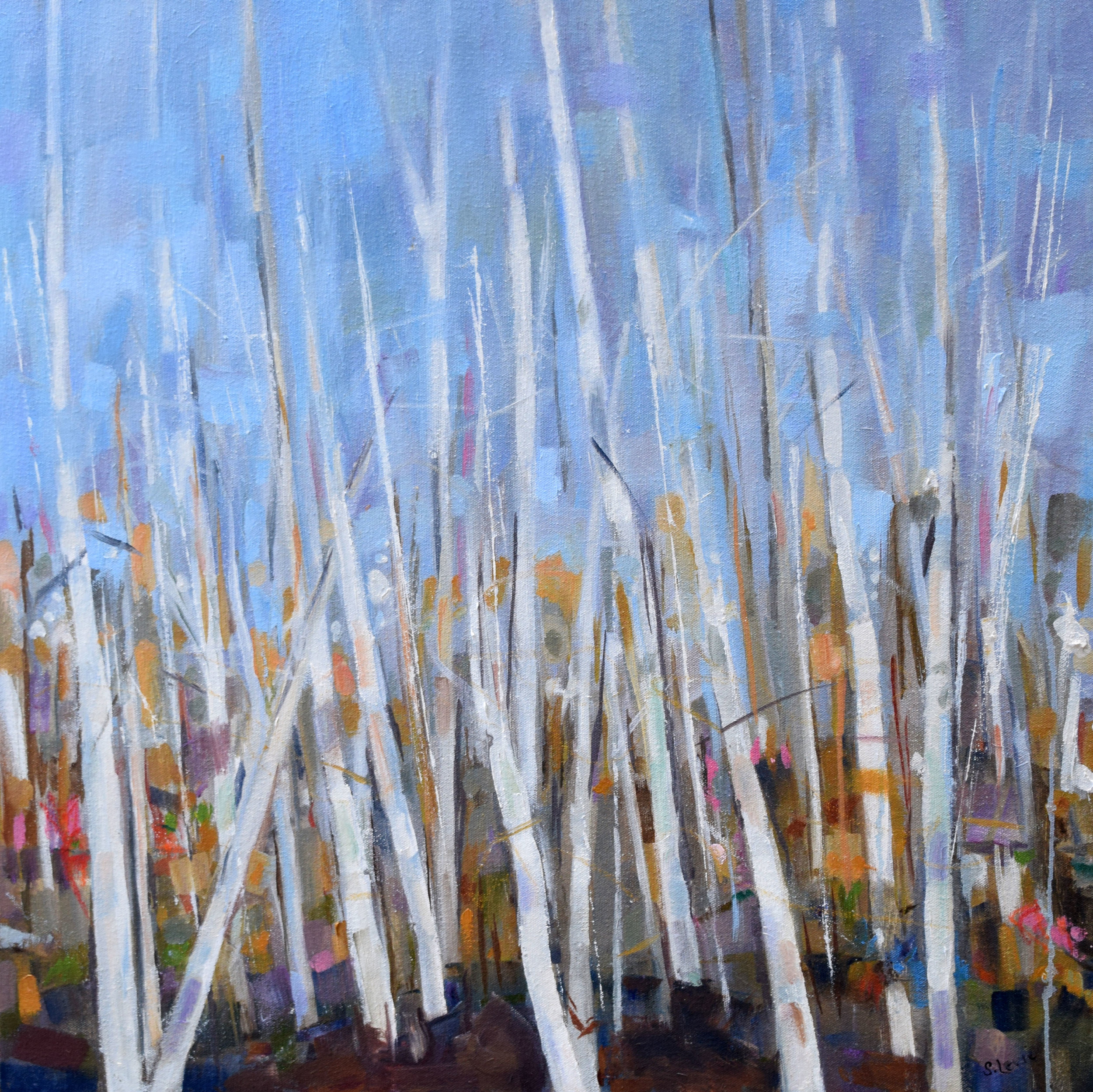 """Aspens   Oil on canvas  30"""" x 30"""""""