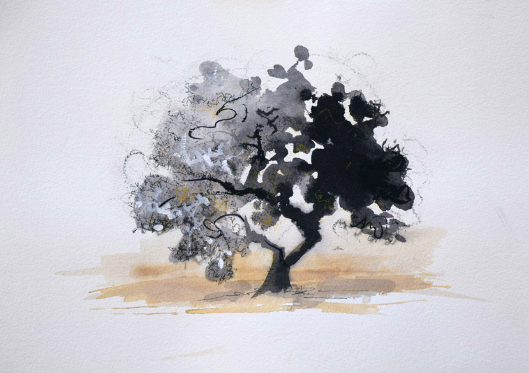 "Stellenbosch South Africa   Ink on paper  13 1/2"" x 15"""