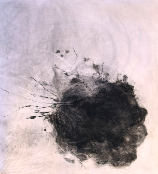 """Exploding Tree   Charcoal on paper  37"""" x 38"""""""
