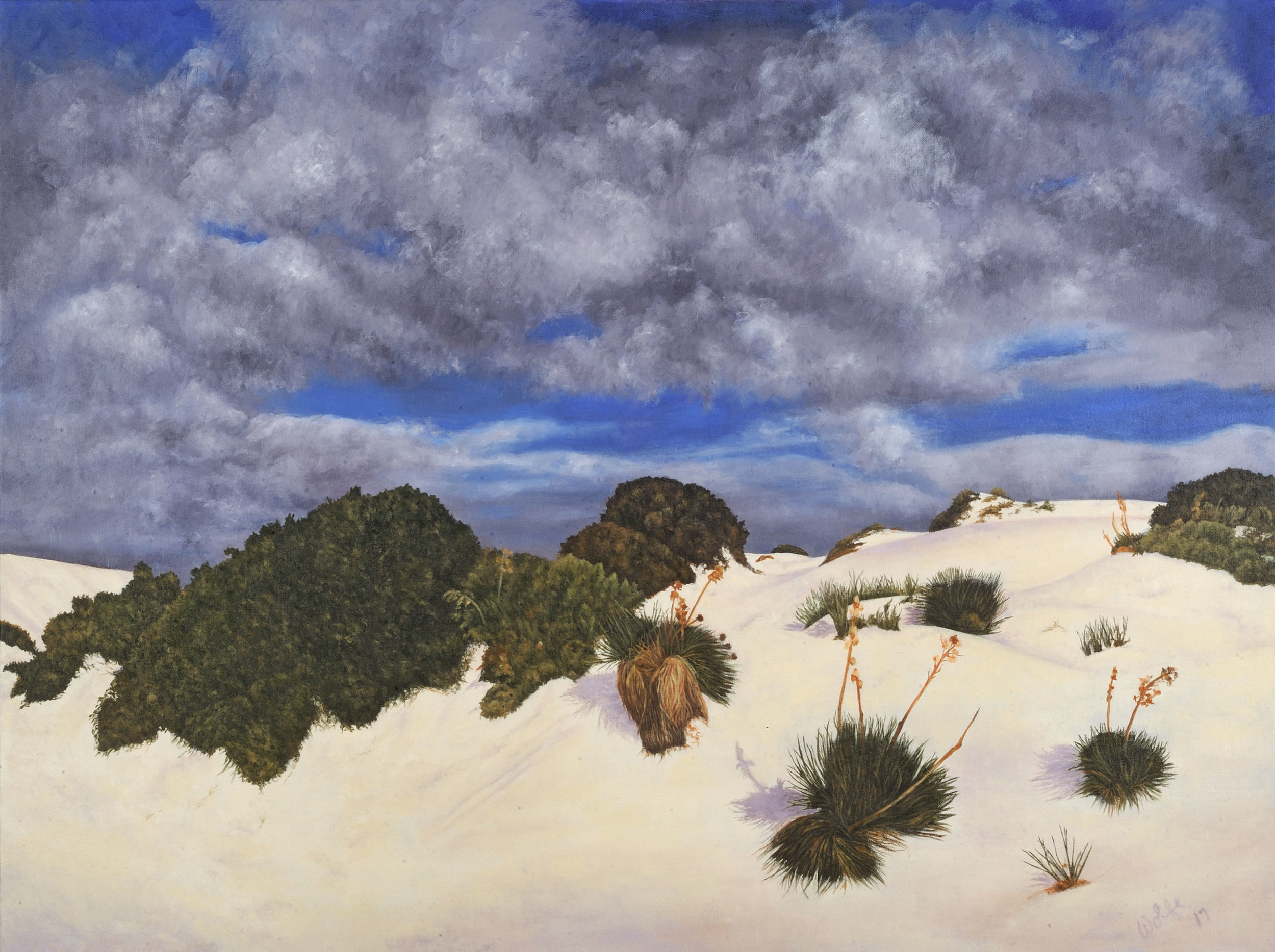 "White Sands Afternoon, 2017    Oil on canvas  30"" x 40""  $3,600  Click image to enlarge ⦿  Inquire"