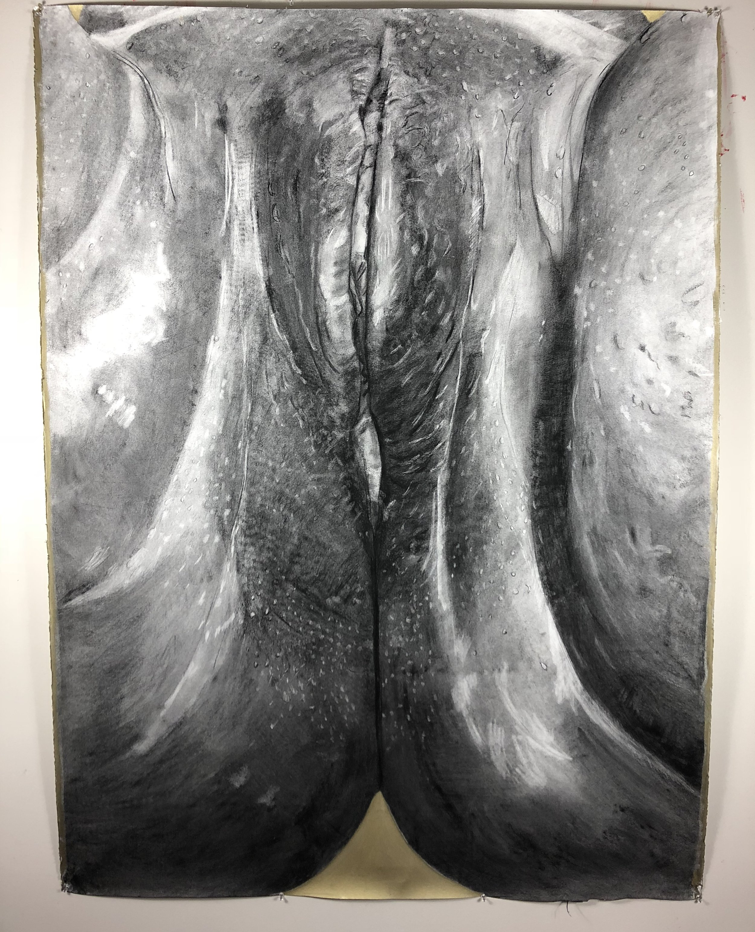 """""""Golden is a large scale charcoal drawing (51 1/2 x 69) of a vulva. I feel this piece has made an impact because it's raised questions of body awareness amongst women and conversations on how powerful the female figure is."""""""