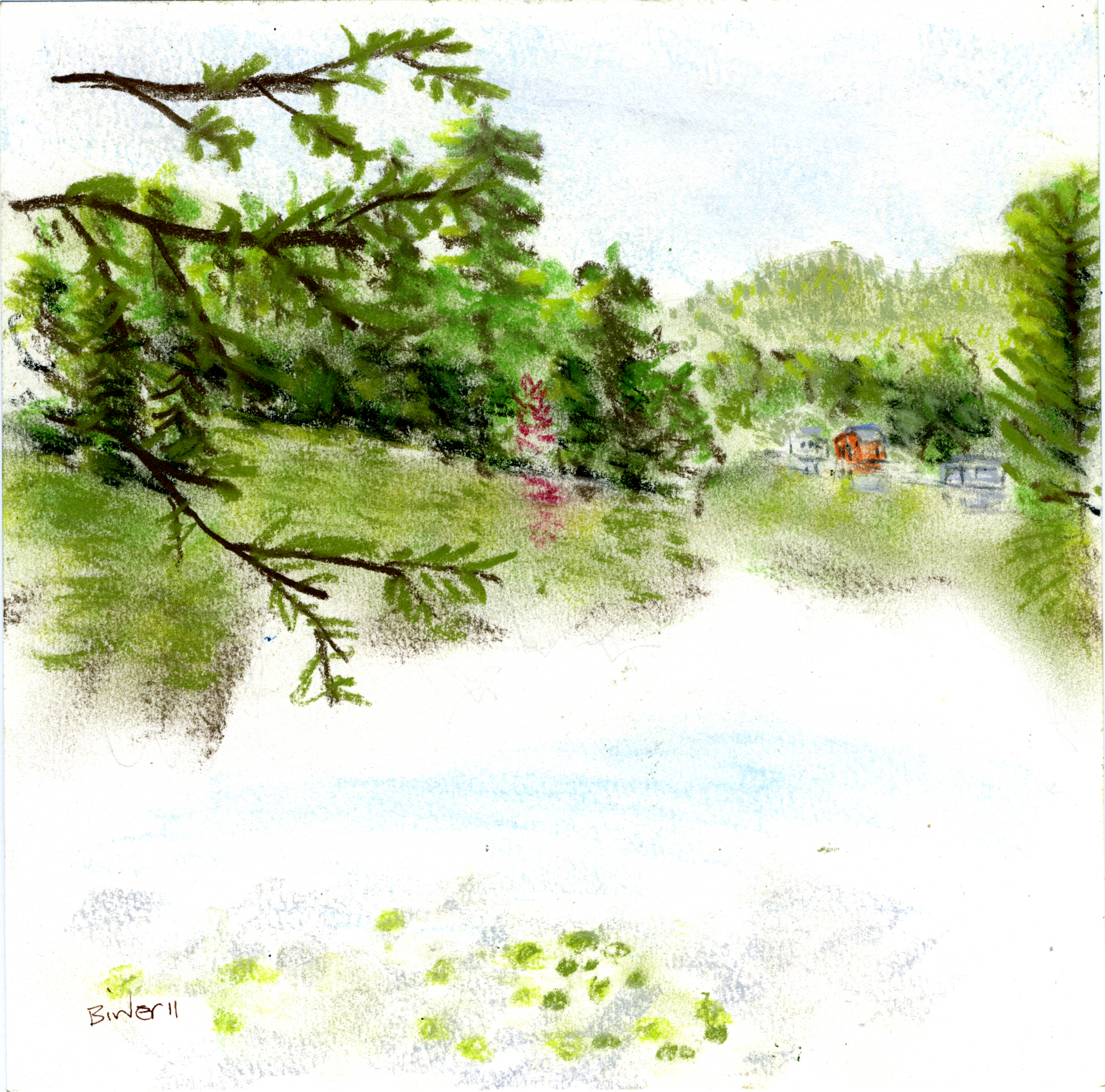 "Maple Turning, Mountain View Lake, Adirondacks, Conte chalk on paper, 8"" x 8"""
