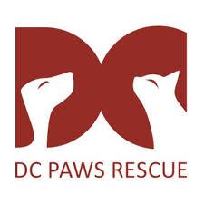 dc paws rescue.jpeg