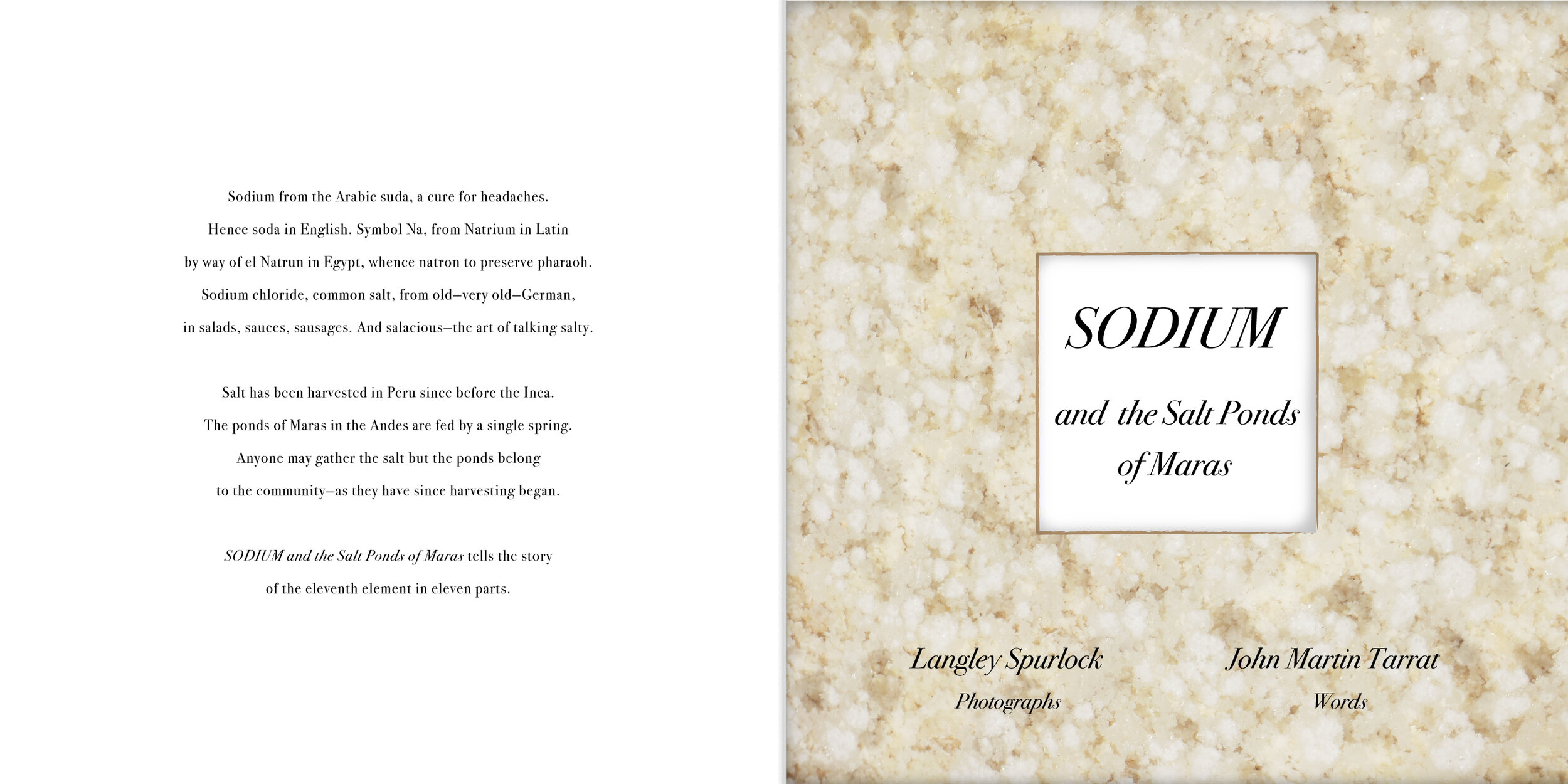 """Sodium 11    Unbound Book Pages and Cover: Archival Pigment Prints (Edition of 5)  10"""" x 20""""  $150 each, $1500 set of 12  Click image to enlarge ⦿  Inquire"""
