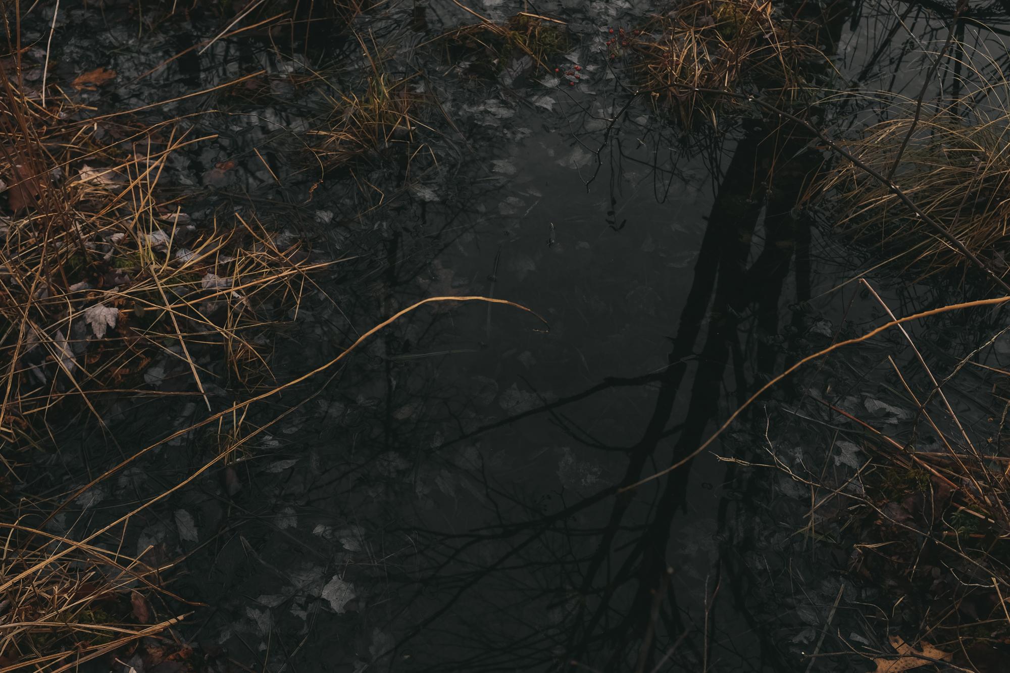 amherstfields-69.jpg