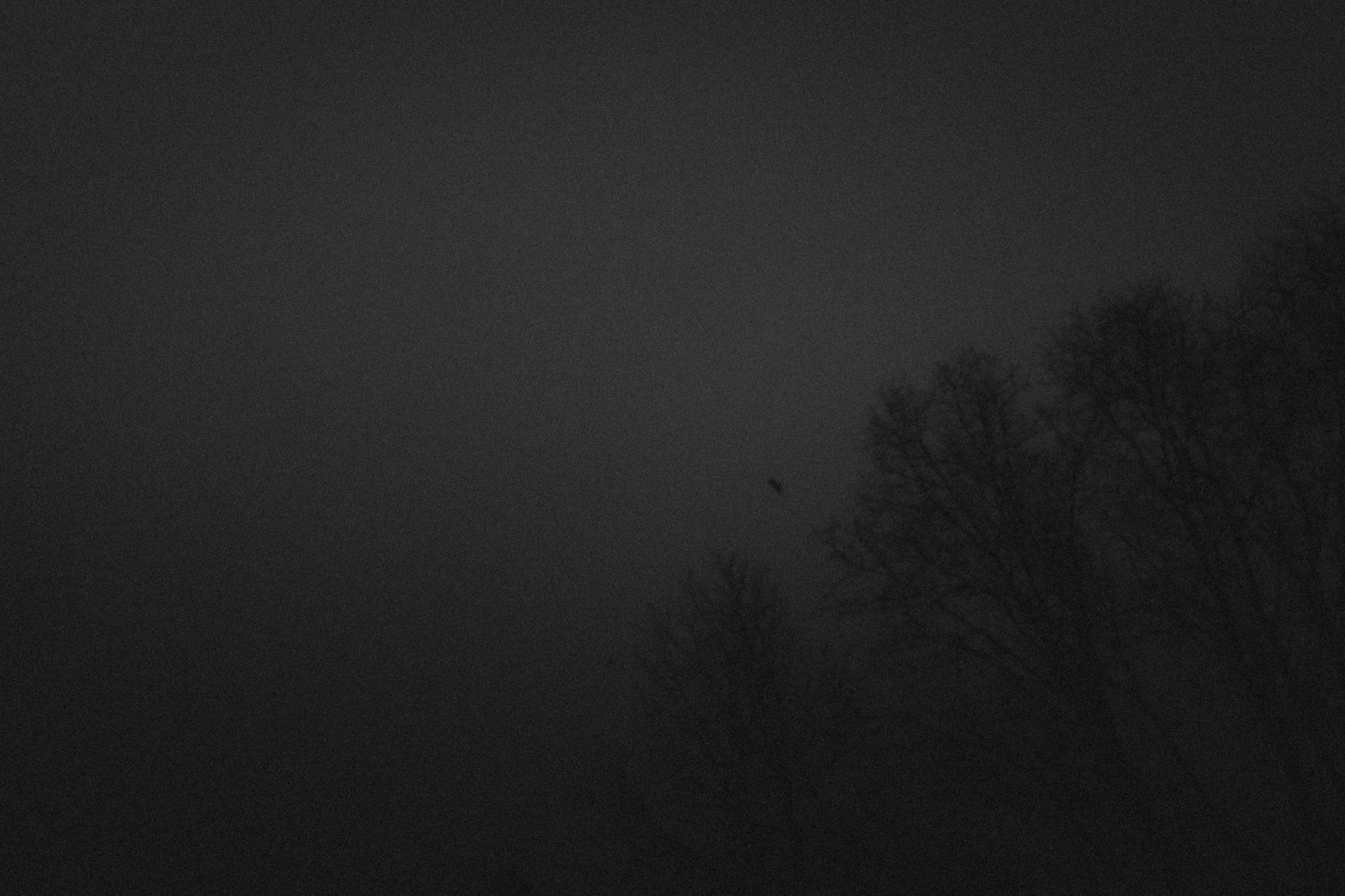 amherstfields-6.jpg