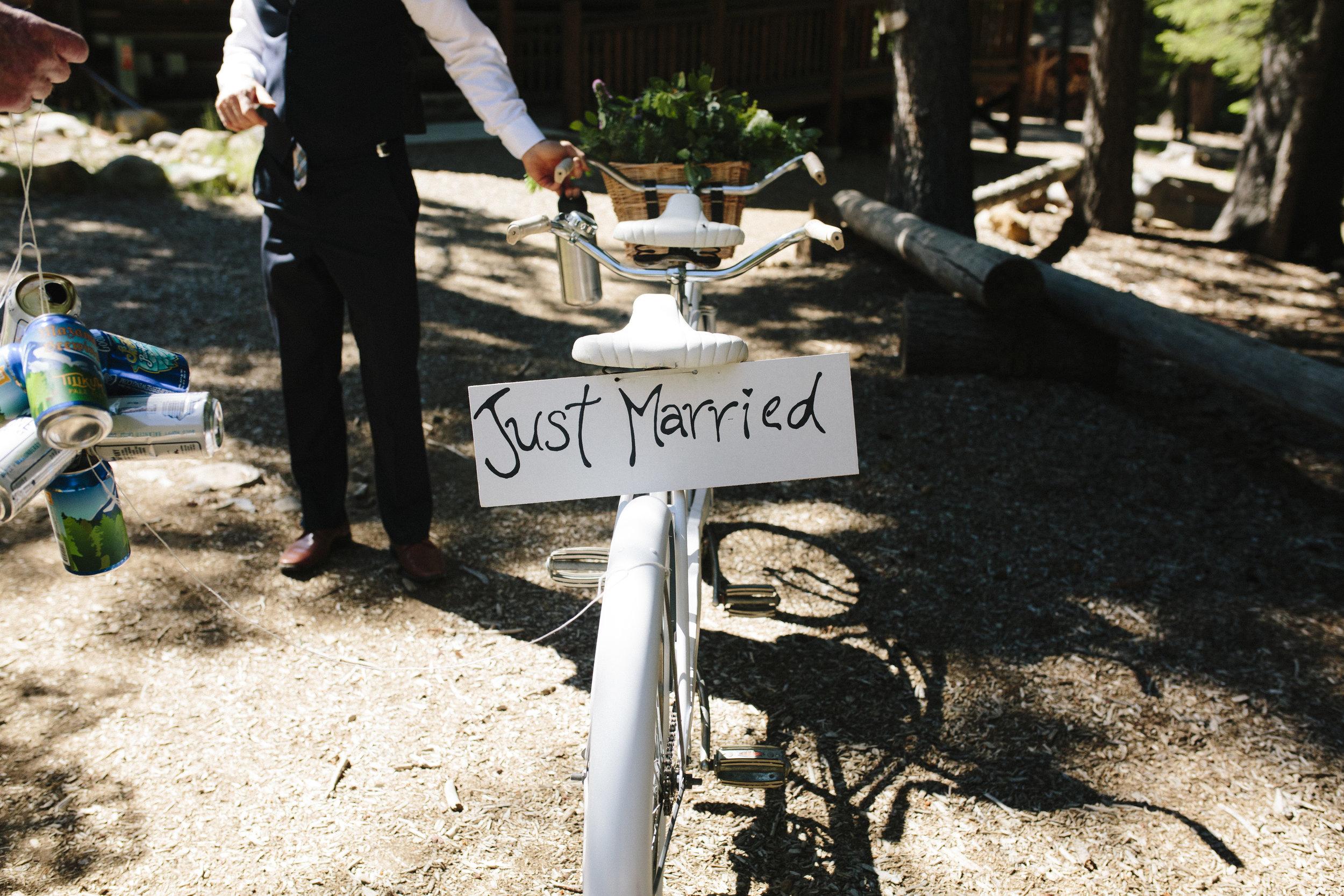 Matt-Lisa-Wedding-18.jpg