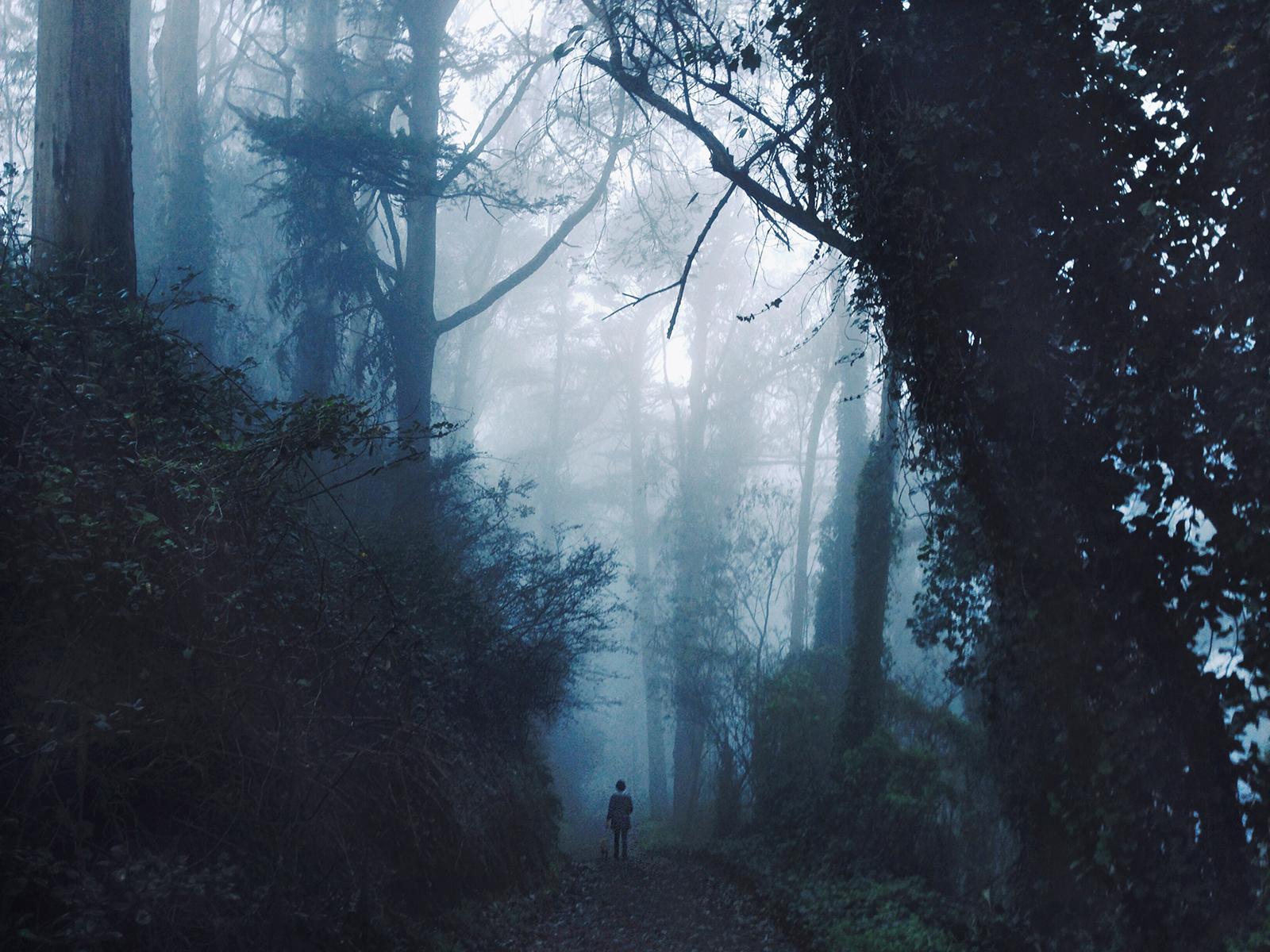 san francisco fog iPhone photography.jpg