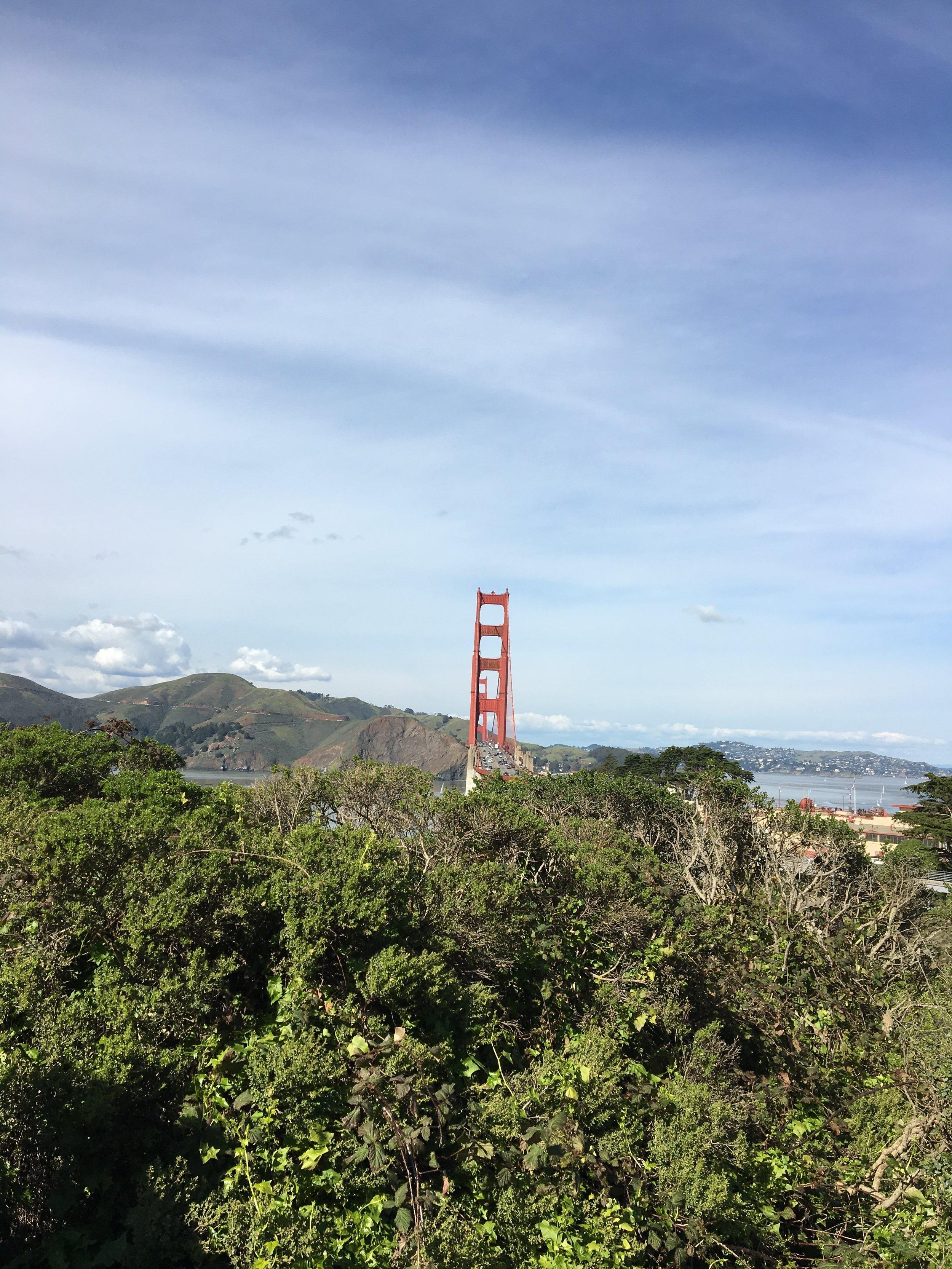 blue green bridge.JPG
