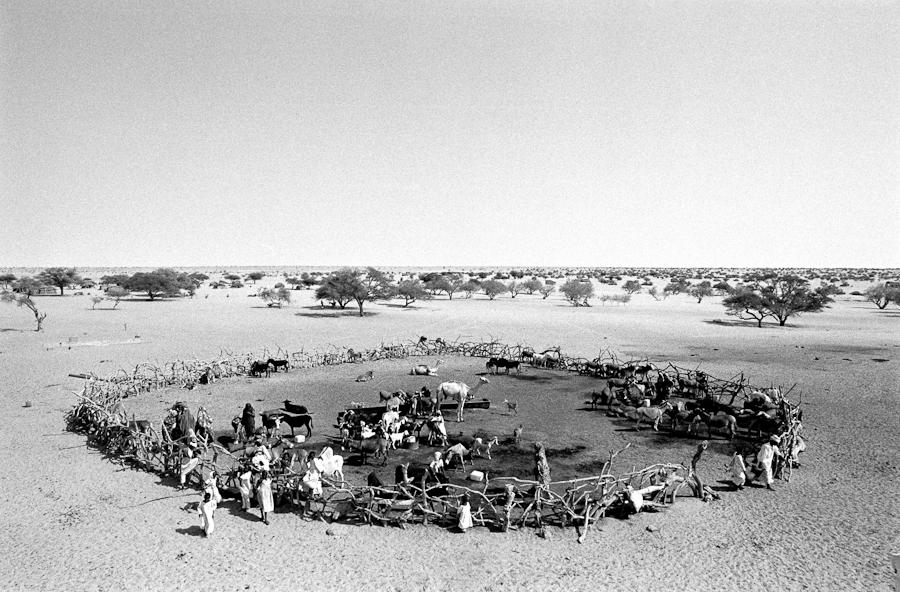 Darfur-01
