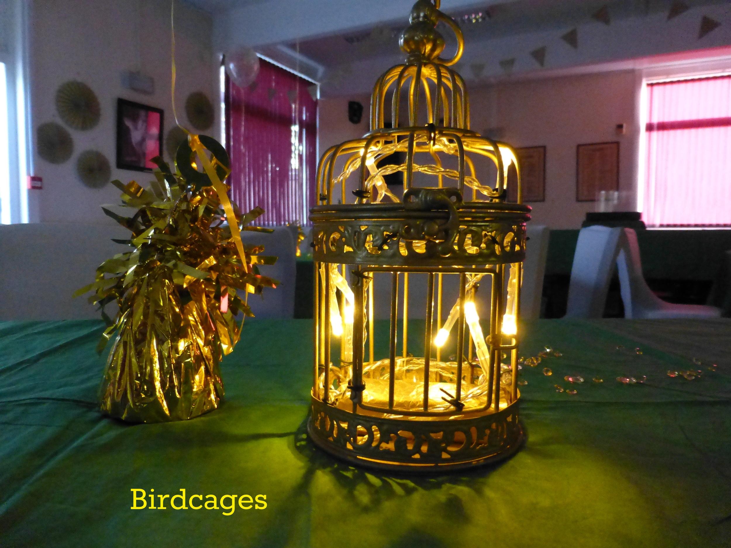 stock birdcage.JPG
