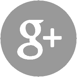 icon-google+.png