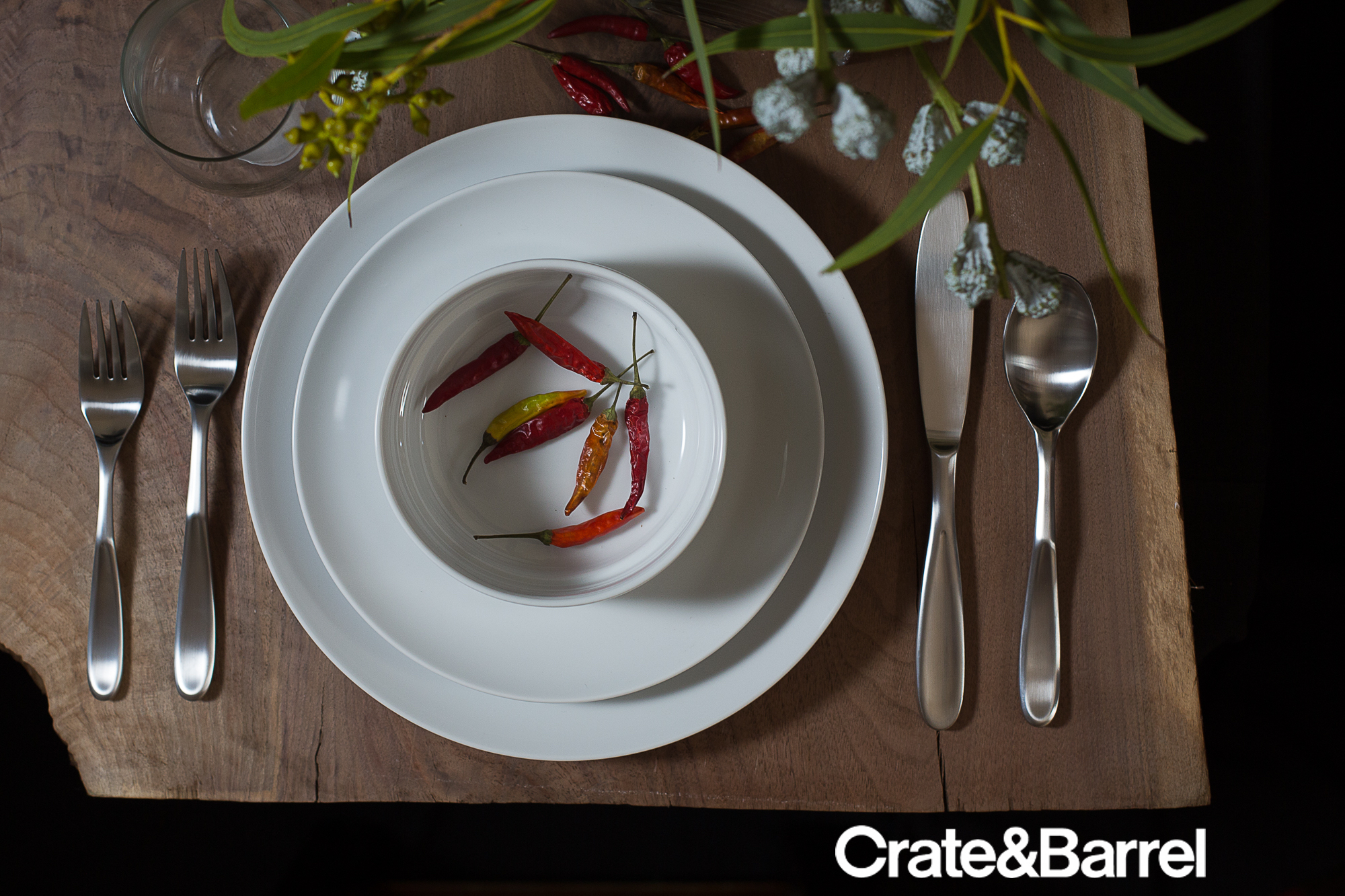 4 DISHWARE_CRATE&BARREL_AD copy.jpg