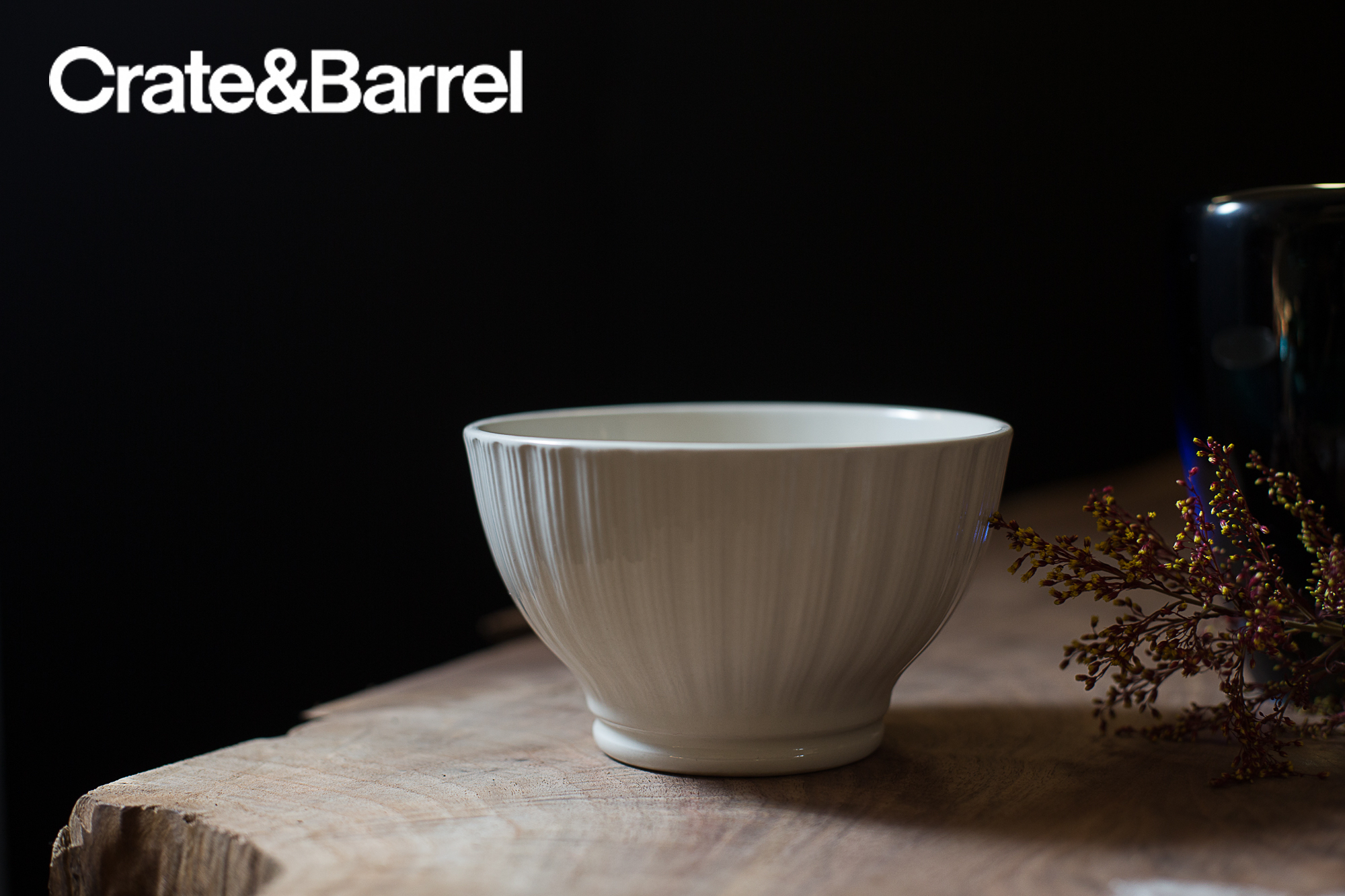 10 DISHWARE_CRATE&BARREL_AD copy.jpg