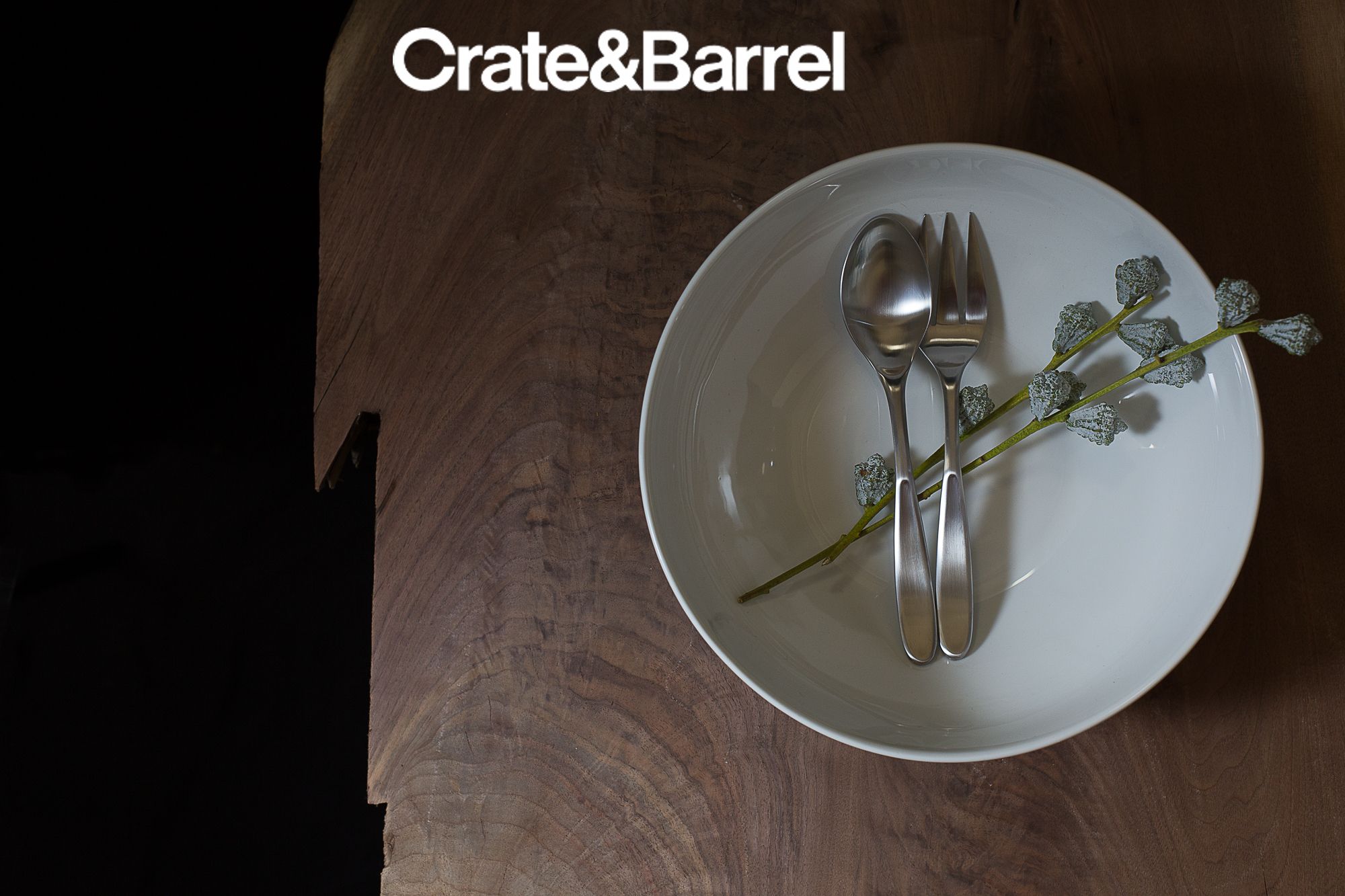 9 DISHWARE_CRATE&BARREL_AD copy.jpg