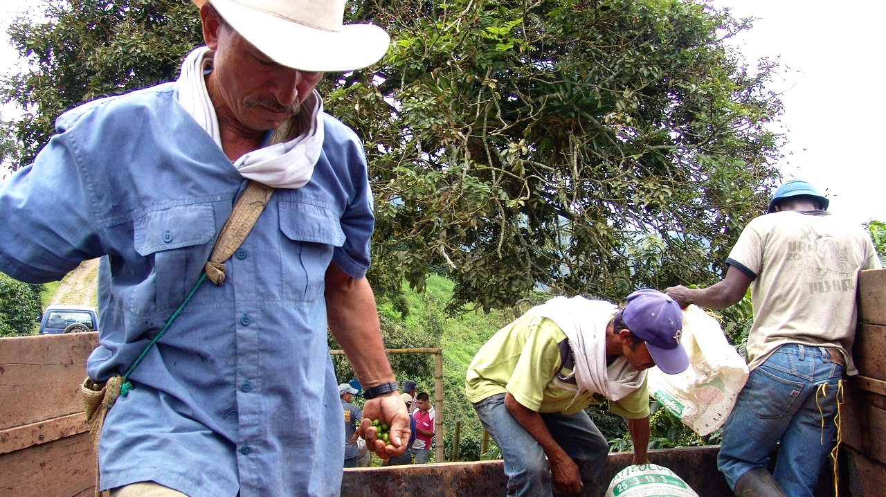 High Altitude Coffee Farmers