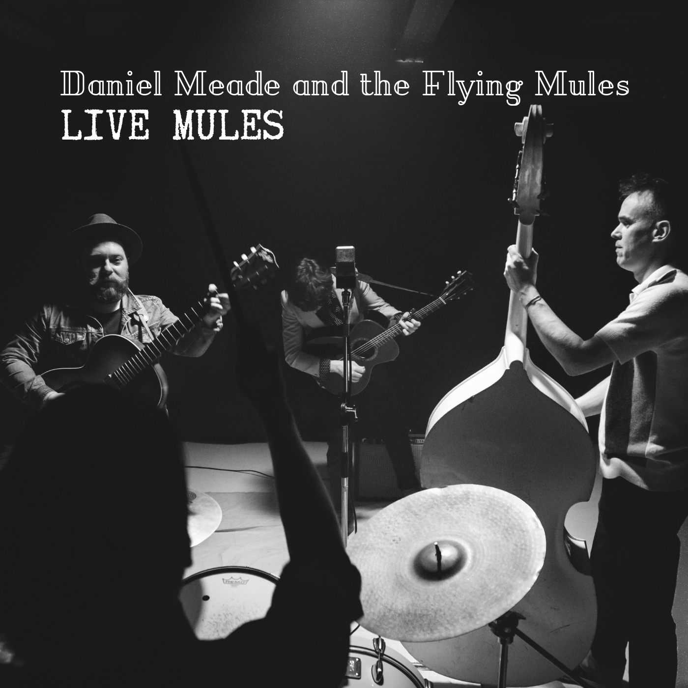 Daniel Meade andThe Flying Mules.jpg