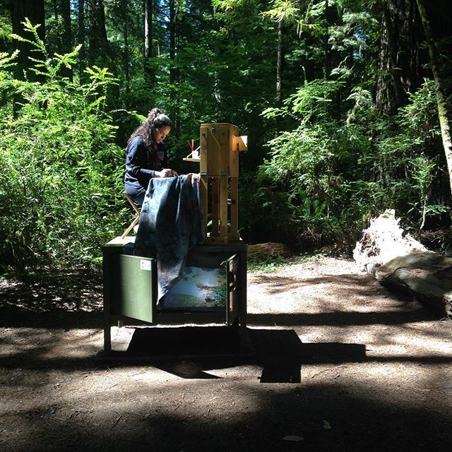 "Studies for ""The Perfect Moment"" #nps100 #findyourpark #nps #redwoodstatepark #redwoods  #mapplethorpe @neaarts @nationalparkservice #parkscanada #neafour"