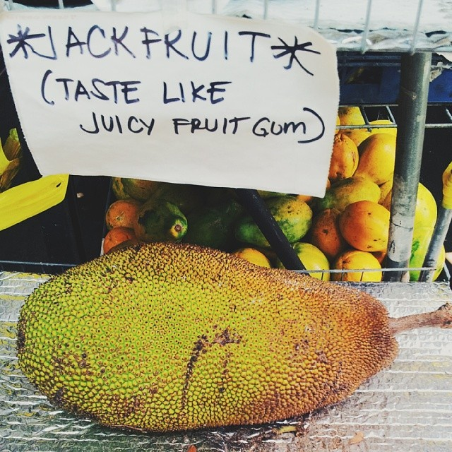 You pick up some jackfruit to replenish from your scare and the high altitude. The sign wasn't lying. It really  does  taste like juicy fruit gum. Life is good.
