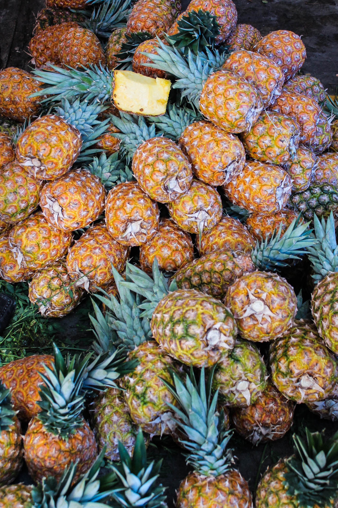 pineapples at Tlacolula Market || OAXACA CITY, MEXICO FOOD GUIDE || creamandhoney.ca