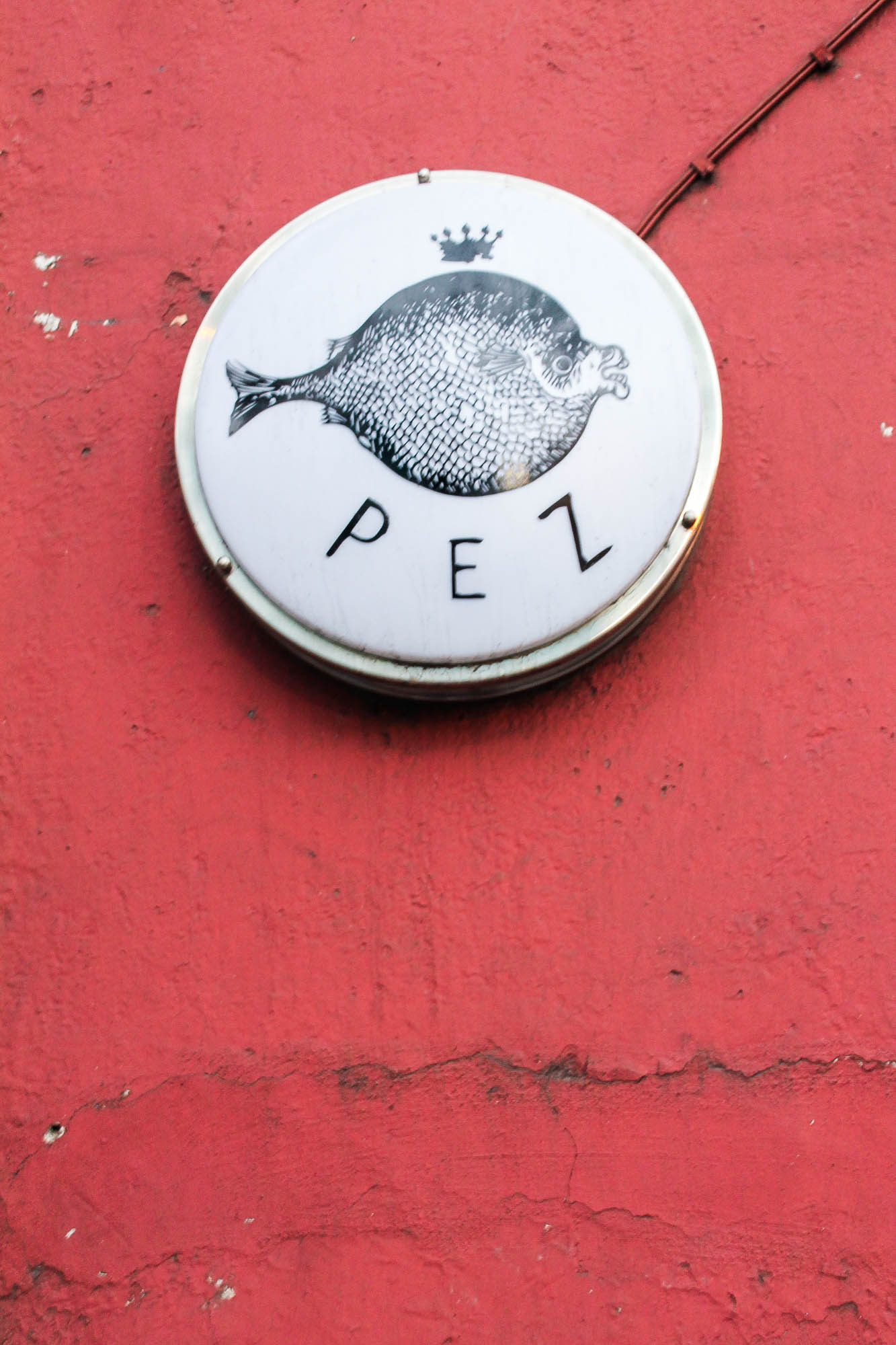 Pez || OAXACA CITY, MEXICO FOOD GUIDE || creamandhoney.ca