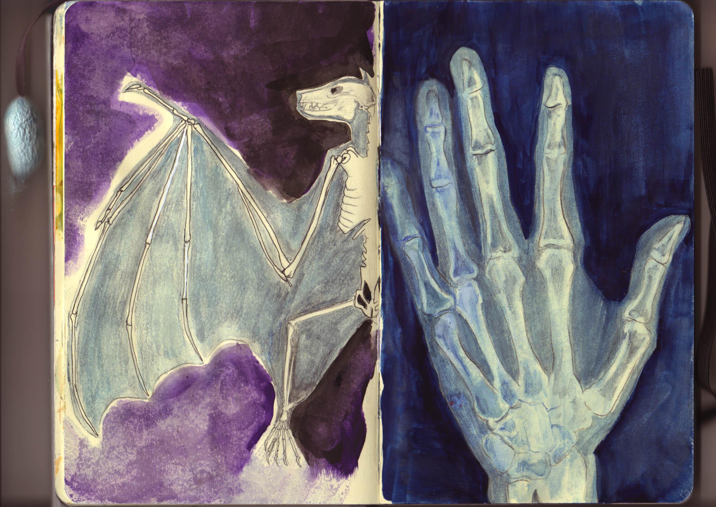 Fiedler:Moleskine:X-rays copy.jpg