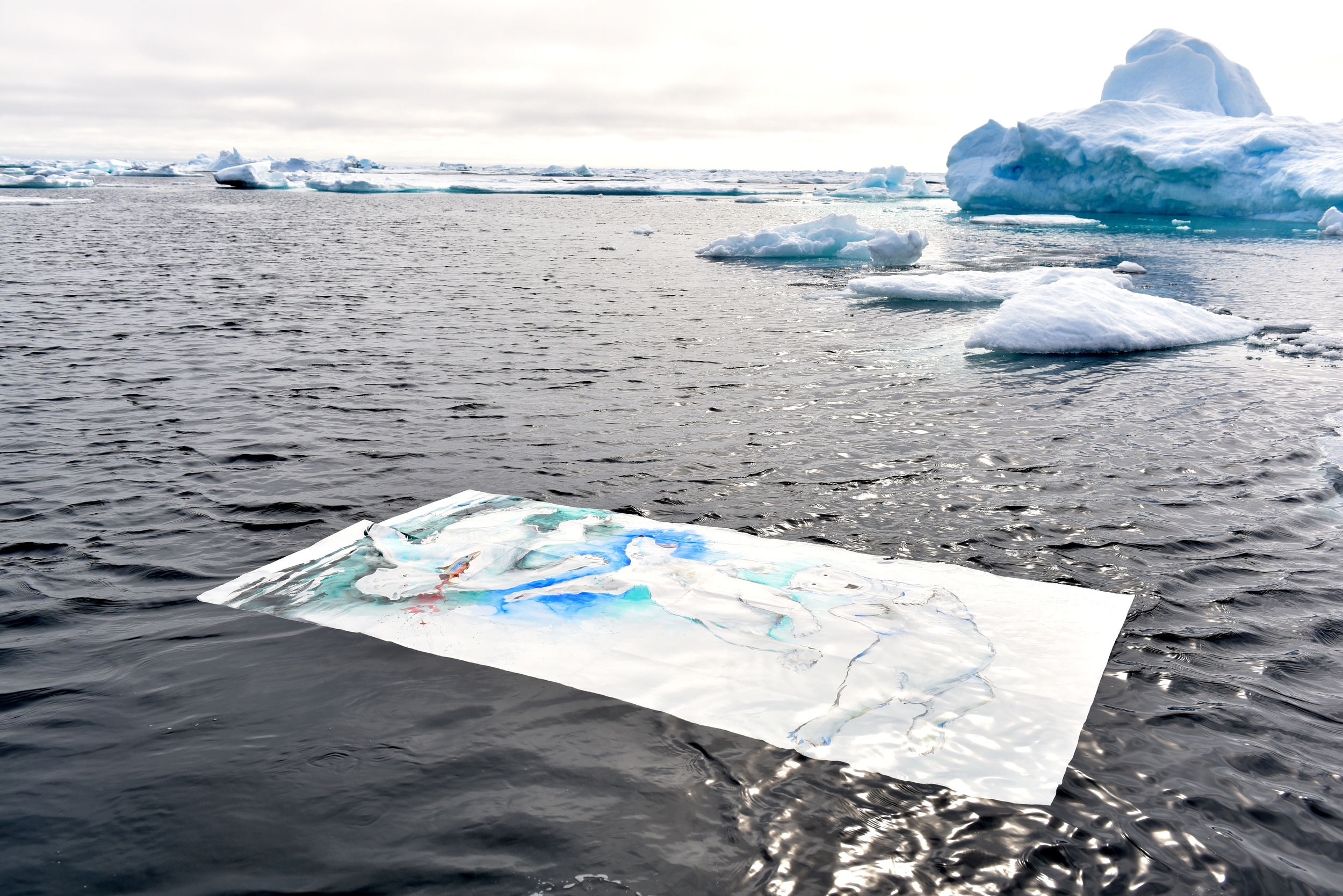 DFiedler-MPolk_PolarBearFloatingArt1_Greenland2015.JPG