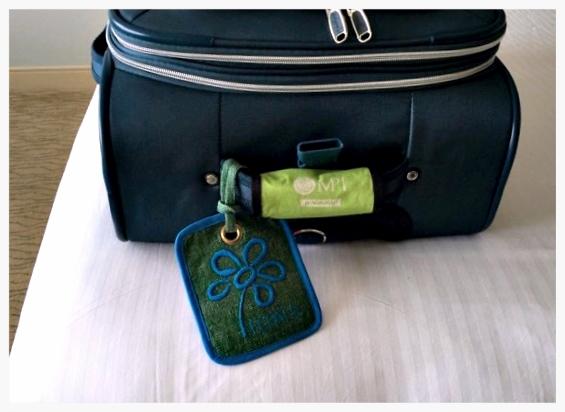 gm_suitcase.jpg
