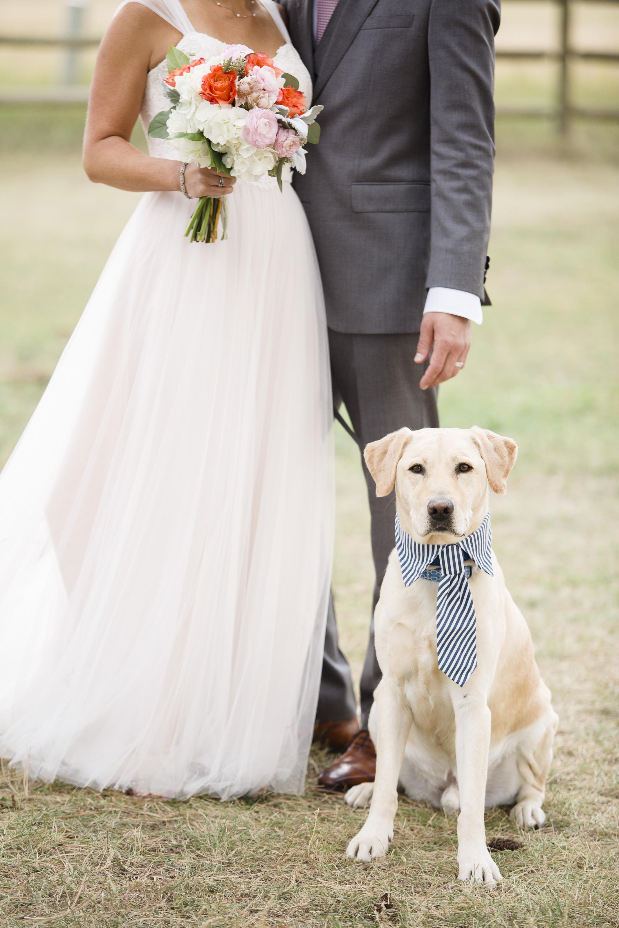 kristen-vance-three-sisters-barn-evergreen-colorado-wedding-2017-4.jpg
