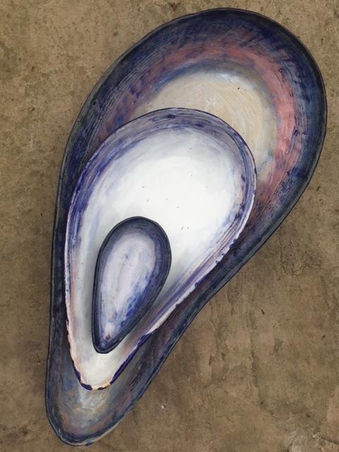 Mussell shells.JPG