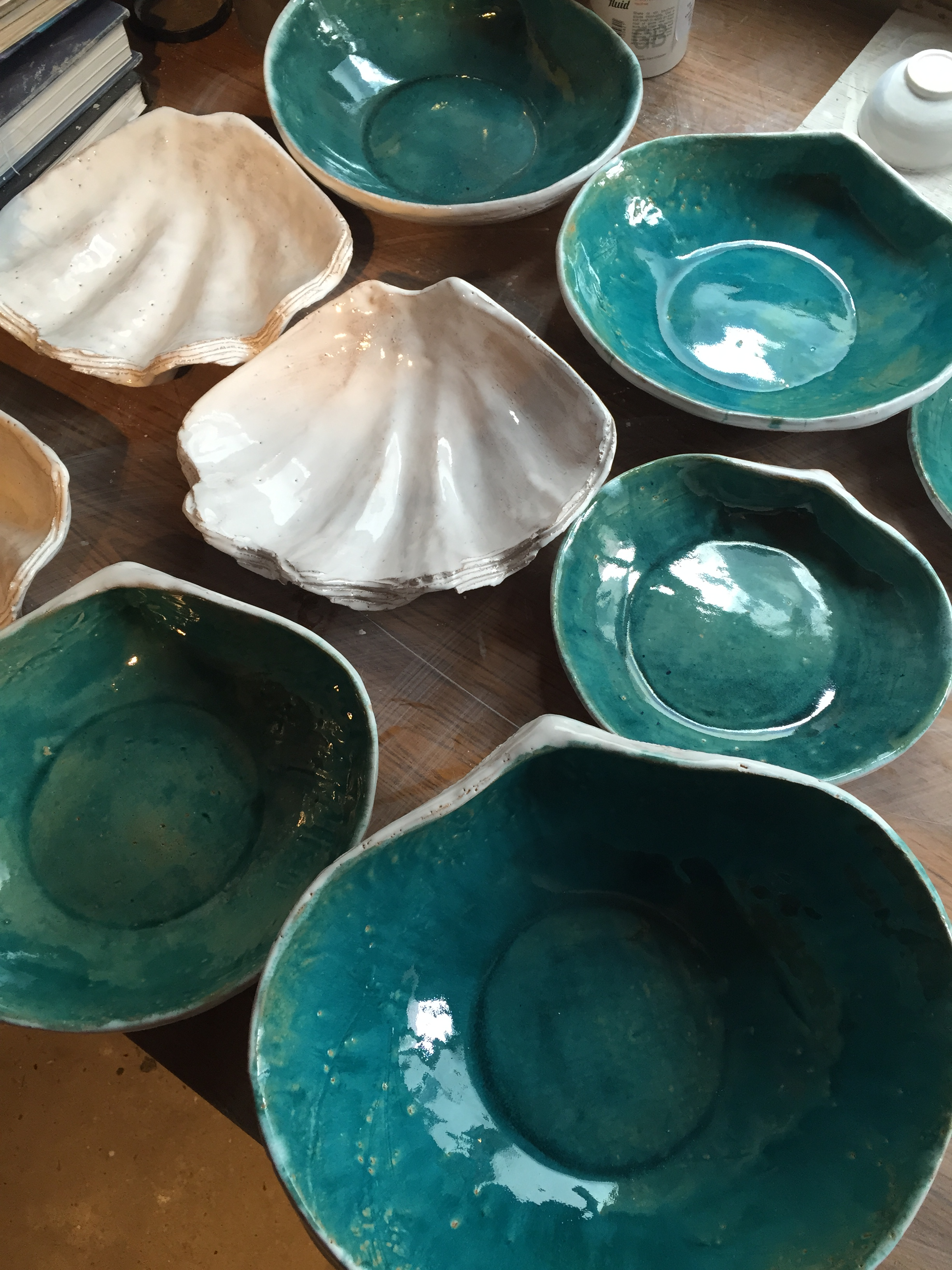 Turquoise Shells and Clam Shells.JPG