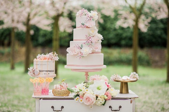 Wedding Photographer Elisabeth Van Lent - Cherry Blossoms_0027.jpg