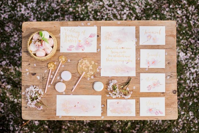 Wedding Photographer Elisabeth Van Lent - Cherry Blossoms_0086.jpg