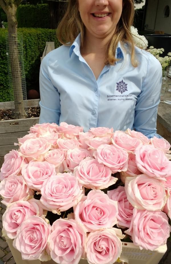 Prachtige Avalanche rozen van Meijer rozen - perfecte bruiloft rozen