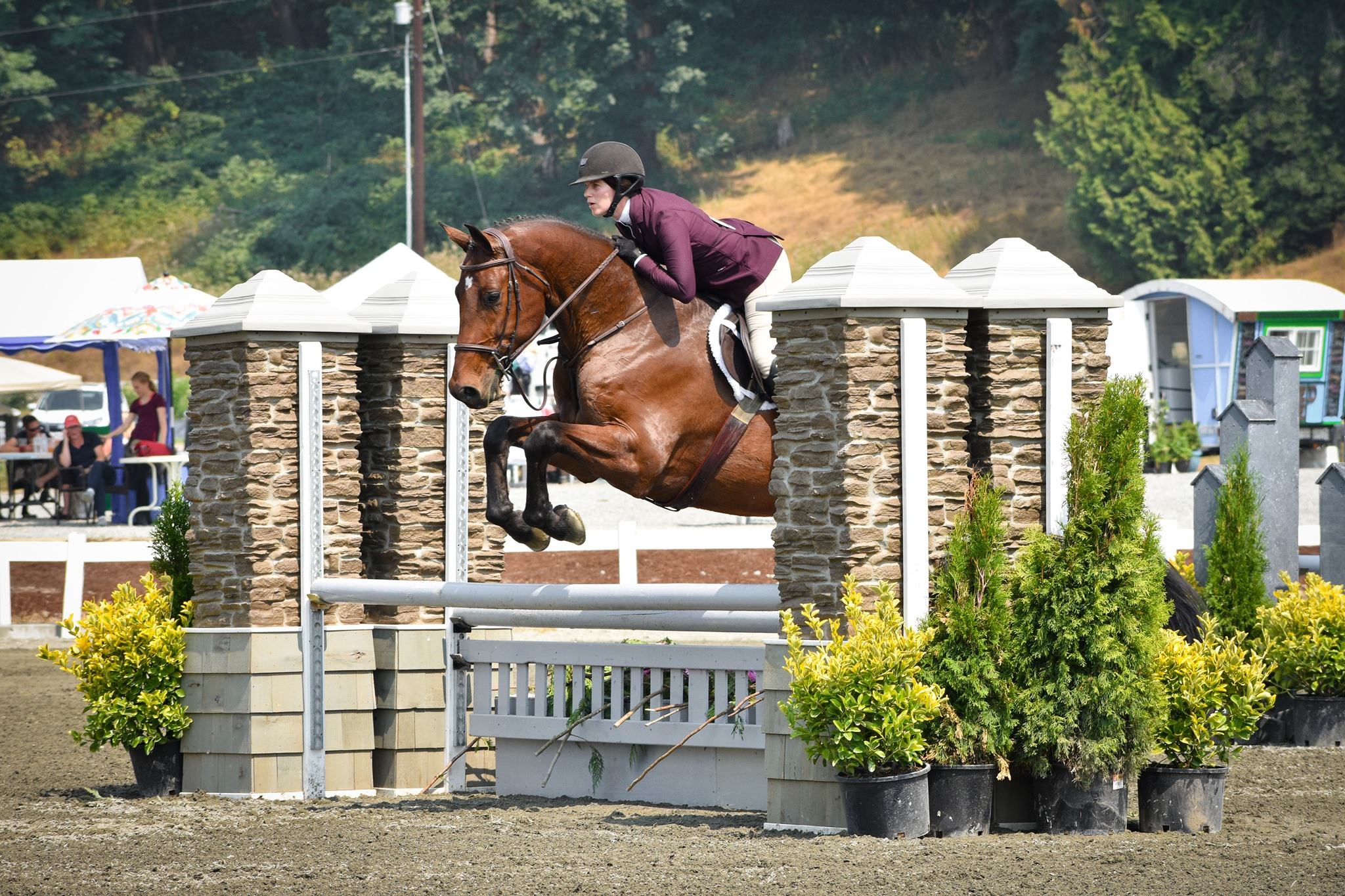 - We take pride in the methodical and correct training of young/green horses. Our program emphasizes flatwork and respect on the ground because we believe they provide the foundation for every horse to realize its potential.