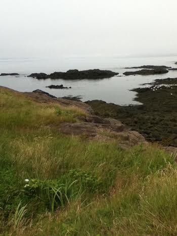 Just some beautiful coast in Nova Scotia...