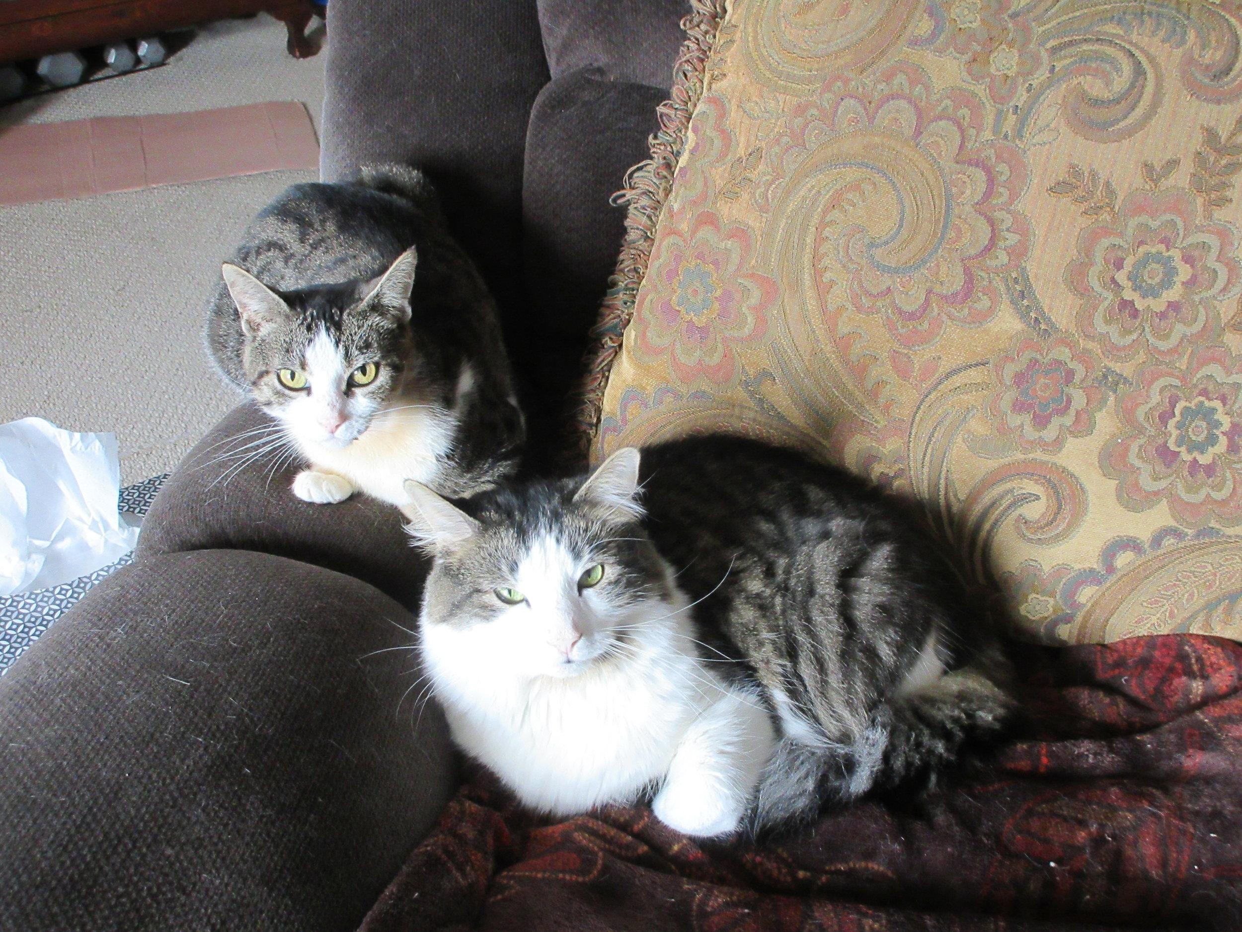 Leona and Owen, 9-2-19