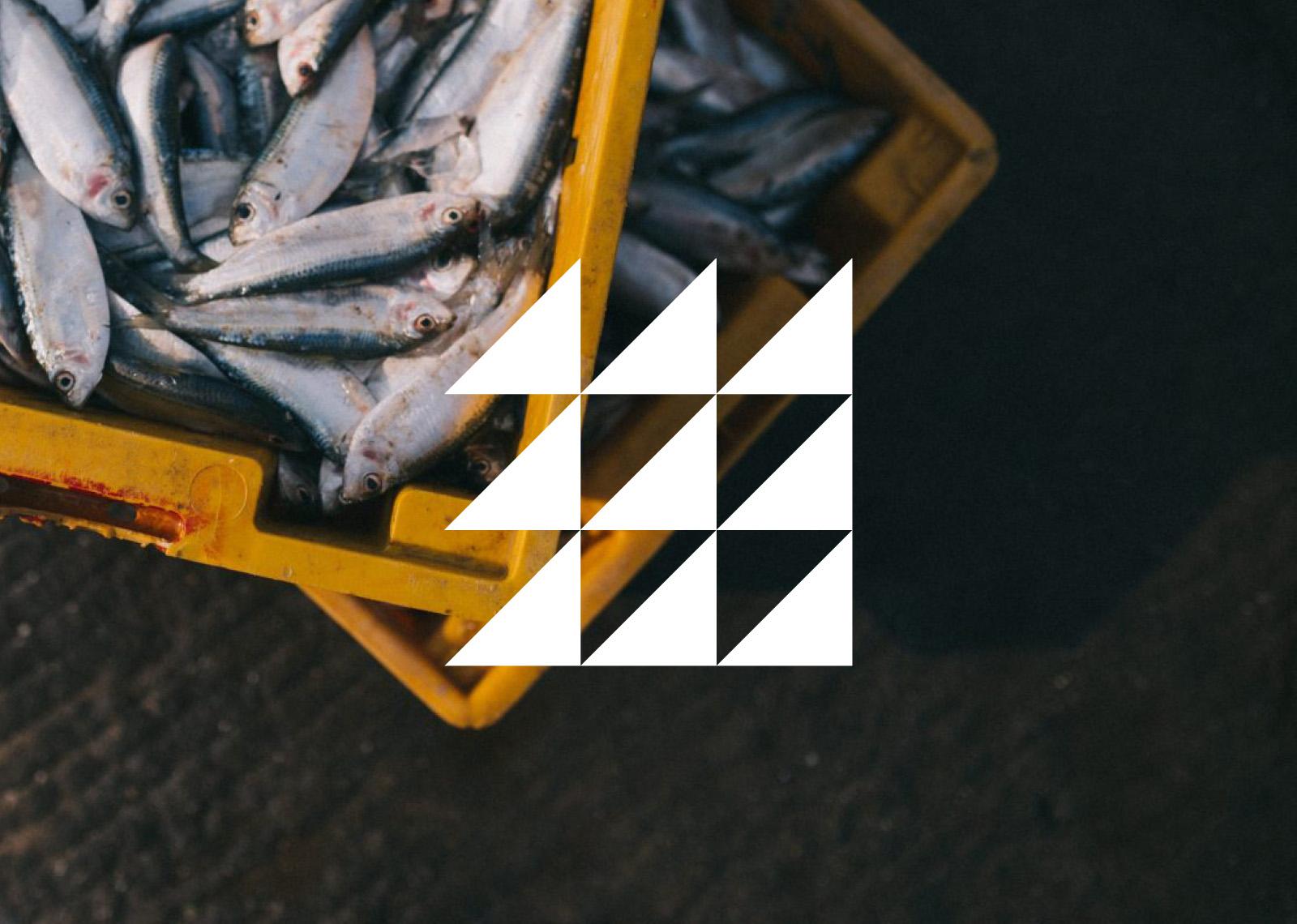 Kilkeel-Harbour-Works-Brand-And-Website-Design-Sean-Greer-Brand-And-Website-Design-Belfast-21.jpg