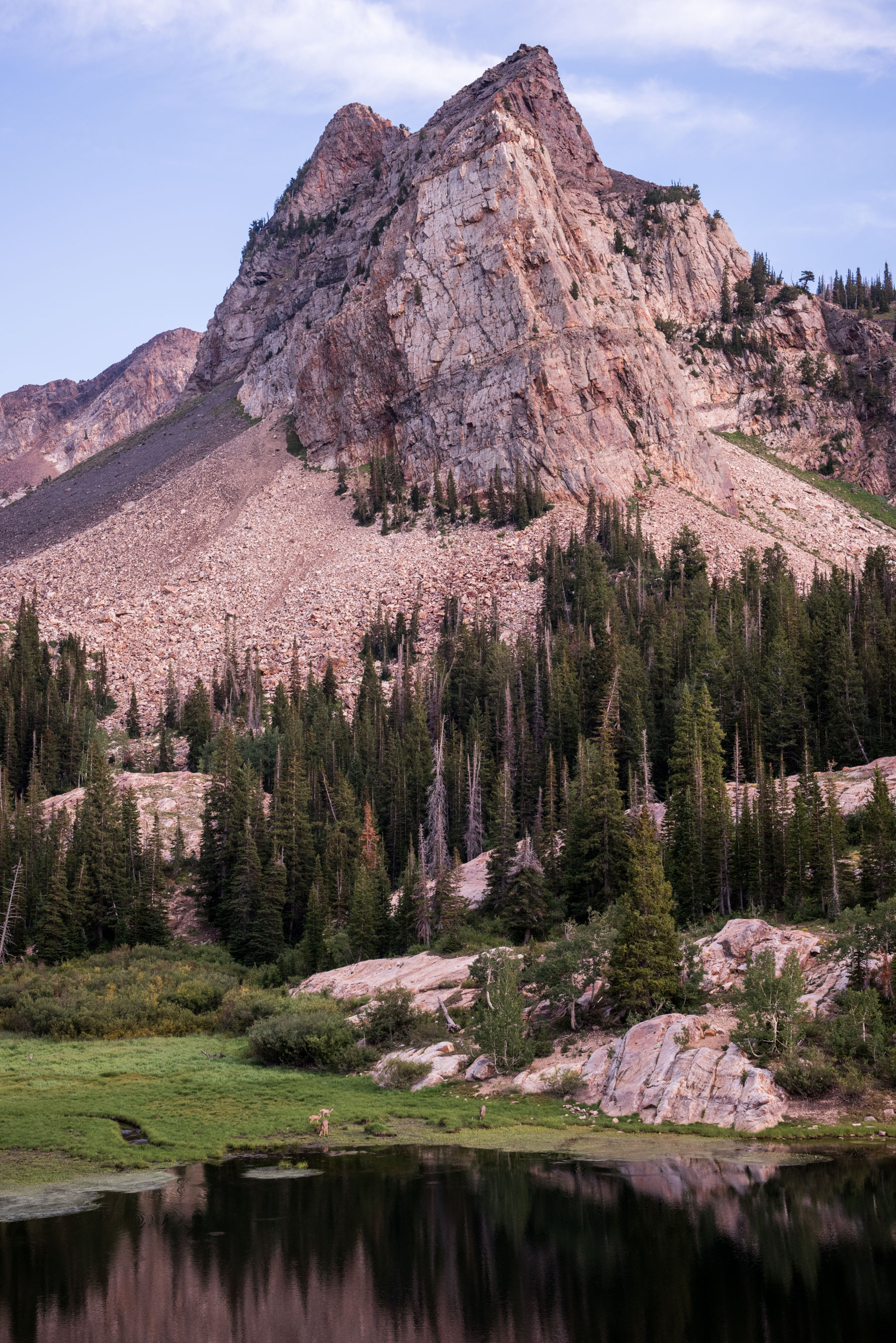 Sundial Peak, Lake Blanche and 4 deer. Wildfires in the area have created a haze that diffuses the light while adding a warm color to this scene. Amazing ice-age glacial activity in this tributary to Big Cottonwood Canyon, Utah. Twin Peaks Wilderness. Wasatch Range.