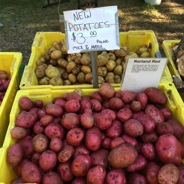 Low-FODMAP-Vegetables-Farmers-Market-4.jpg