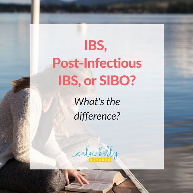 DO YOU KNOW WHAT TYPE OF IBS YOU HAVE? 🤷‍♀️ *⠀ In my latest article, I'm breaking down the differences between 3 commonly misunderstood and hard-to-diagnose digestive issues:⠀ ⠀ 1⃣ IBS ⠀ 2⃣ Post-Infectious IBS⠀ 3⃣ SIBO (small intestinal bacterial overgrowth)⠀ ⠀ SIBO is often lumped together with IBS because symptoms can look similar, but there are some important differences when it comes to treatment.⠀ *⠀ Click the link in my profile to read the full article or comment and share the story of YOUR diagnosis!